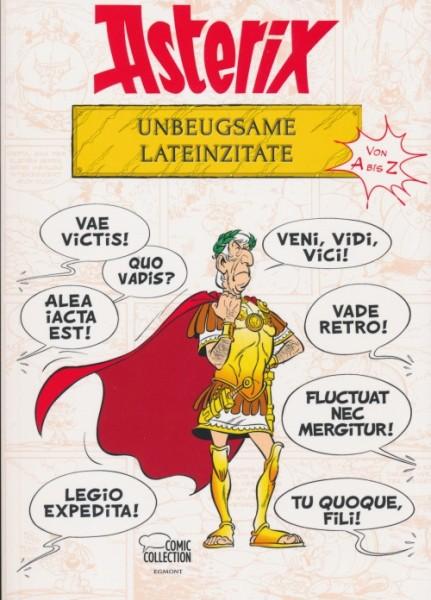 Asterix - Unbeugsame Lateinzitate
